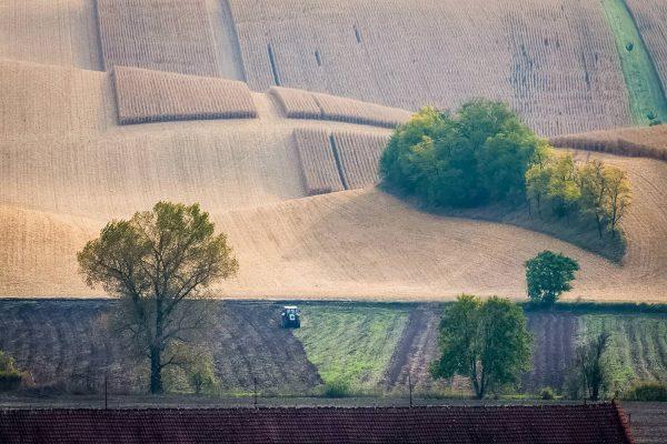 Moravian Tuscany