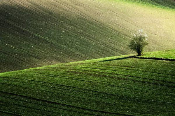 Moravian Tuscany, South Moravia, Czechia