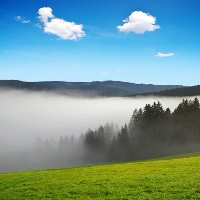 Morning fog in Šumava National Park, Czech Republic