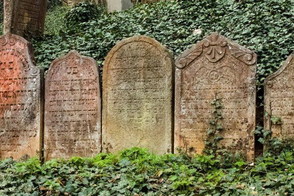 Gravestones in the Jewish Cemetery of Trebic, Moravia, Czechia