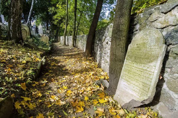 The Jewish Cemetery of Trebic, Vysocina, Moravia, Czechia