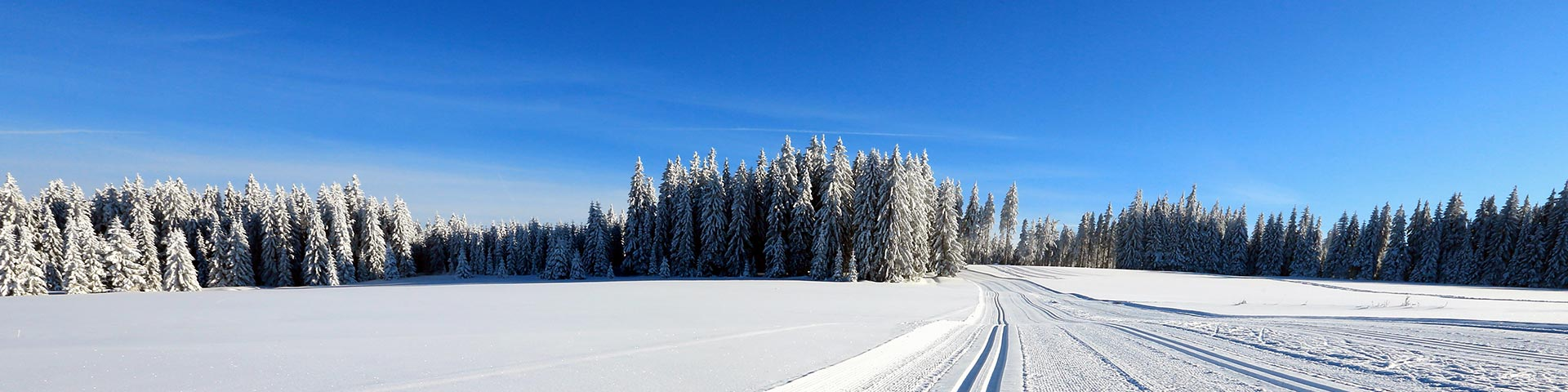 Cross-Country Skiing – Day Trips from Prague