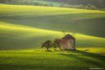 Moravian Tuscany Photo Tour