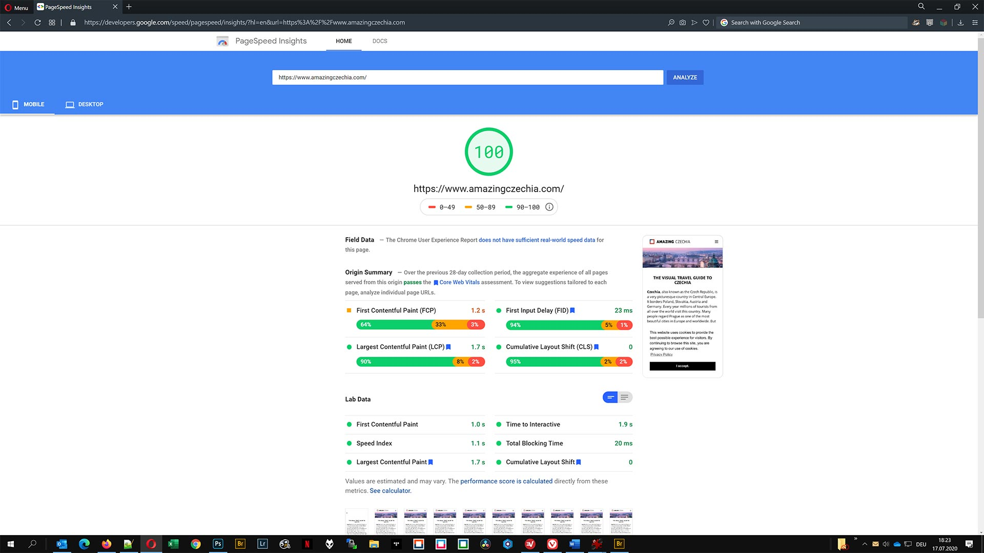 Google PageSpeed Insights Score