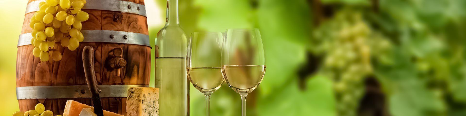 Wine Culture in Moravia / Czechia